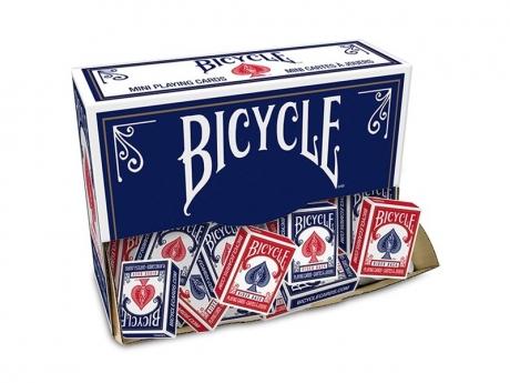 Bicycle MINI Rider back